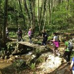 Nordic Walking weekend at Montseny